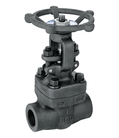 Forged Y Type Globe Valve